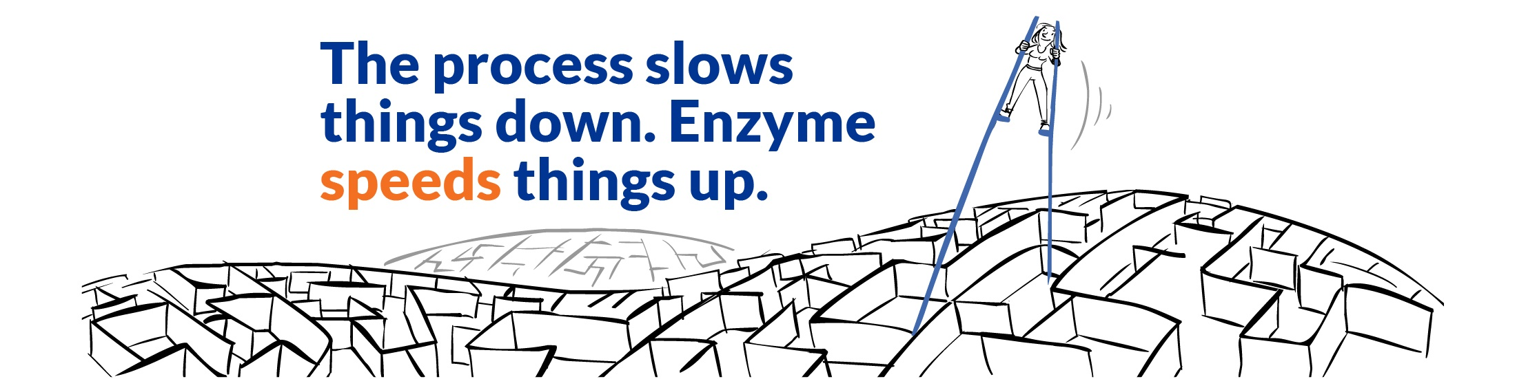 The process slows things down. Enzyme speeds things up.